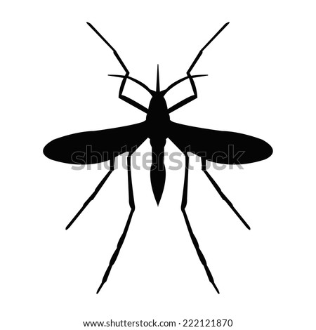 Silhouette of a mosquito - stock vector