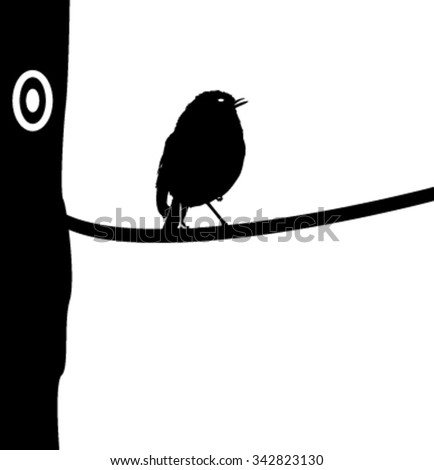 Silhouette of a robin standing on a tree branch