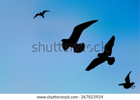 Silhouette of a seagull in the blue sky. Vector illustration