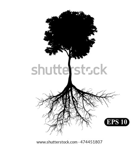 Silhouette of a tree with roots. Illustration, vector EPS 10