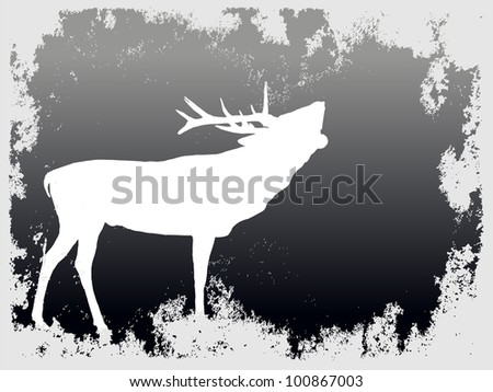 silhouette of a white deer