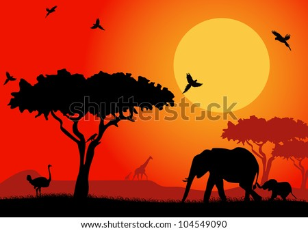 silhouette of an elephants ostrich and stunning eagle in the african desert
