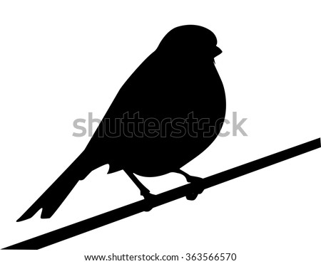 silhouette of bird, a sparrow is on a branch, shape of bird