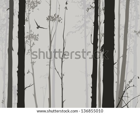 silhouette of deciduous forest with a flying owl 2