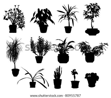 Plant+silhouette