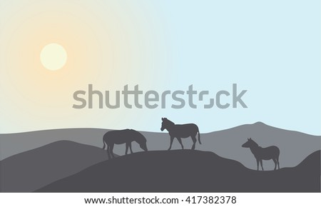 Silhouette of family zebra at the noon