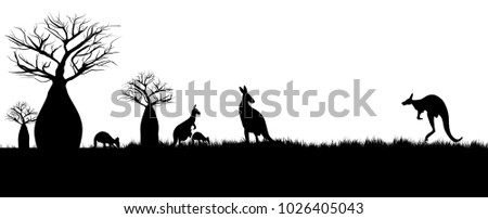 silhouette of kangaroos hopping in the outback of Australia around baobao trees