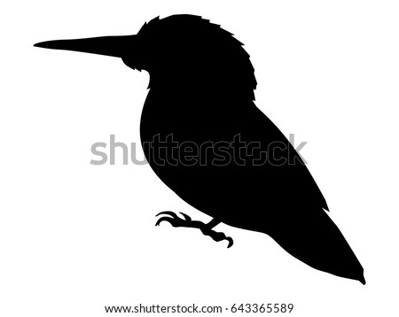 silhouette of kingfisher