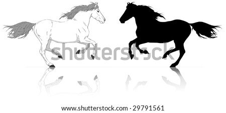 silhouette of run two horses white and black vector illustration