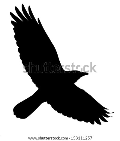 Crows Flying Stock Images, Royalty-Free Images & Vectors ...