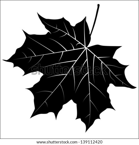Silhouette of the maple leaf. Vector illustration - stock vector