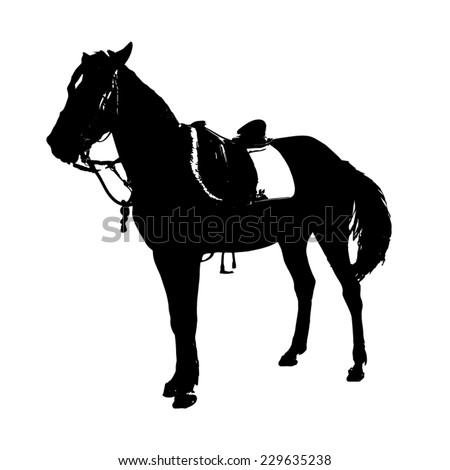Silhouette saddled horse