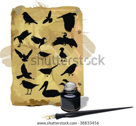 Silhouettes, insects, vector illustration - stock vector