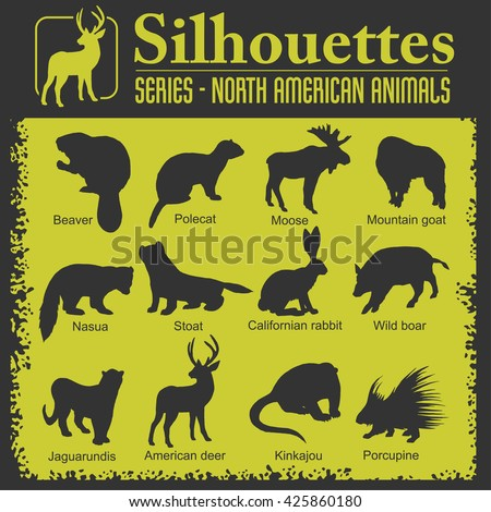 Silhouettes - Isolated North American animals. Vector set.  - stock vector
