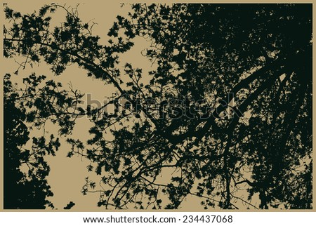 silhouettes of big pine trees in the forest . detailed vector illustration - stock vector