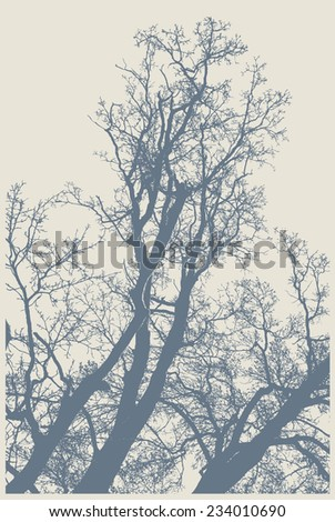 silhouettes of big trees in the park. detailed vector illustration - stock vector