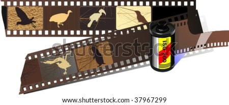 silhouettes of birds 2, vector illustration - stock vector