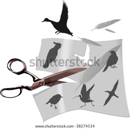 silhouettes of birds, vector illustration - stock vector