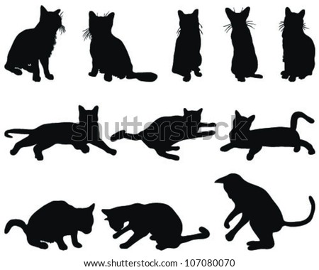 Silhouettes of cats in different poses-vector - stock vector