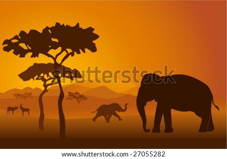 Silhouettes of elephants on backgrounds Kilimanjaro - stock vector