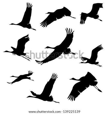 Silhouettes Flying Birds Cranes Stock Vector 139225139 ...