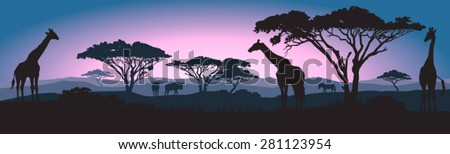 Silhouettes of giraffes and other wild African animals at sunrise  - stock vector