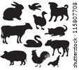 Silhouettes of hand drawn farm animals. Dog,  cat, duck, rabbit, cow, pig, cock, hen, swan, puppy, kitten. - stock vector