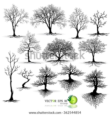 silhouettes of leaves,silhouettes of trees,tree branch,Tree,tree casts a shadow,trees with leaves on white background - stock vector