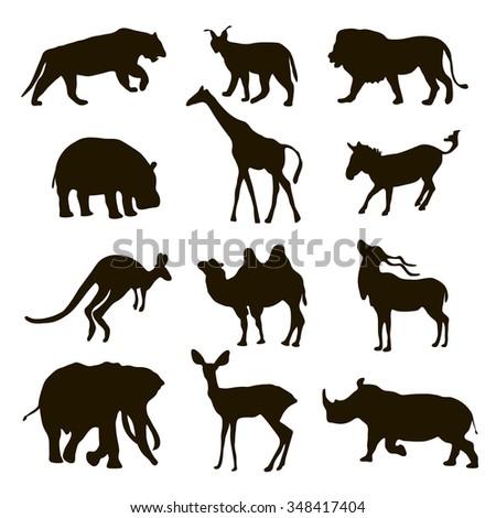 Silhouettes of the African animals / lion, leopard, kangaroo, giraffe, elephant, rhinoceros, zebra, camel, tiger, deer, hippopotamus, lynx isolated on white background.  - stock vector