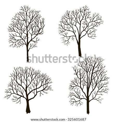 Silhouettes of  tree without leaves, winter trees, hand drawn vector illustration, design element