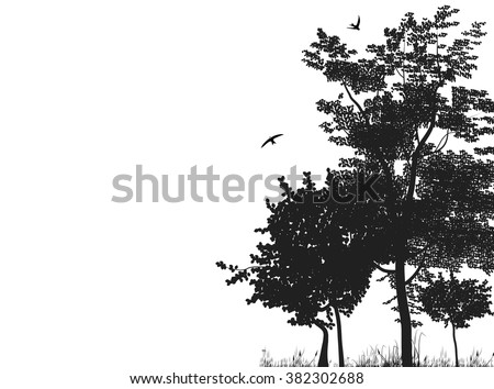 Silhouettes of trees in a forest glade. Vector black and white illustration - stock vector