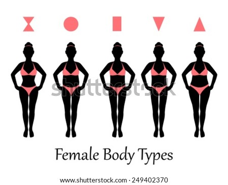 silhouettes of various types of female figures - stock vector
