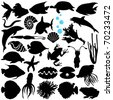 Silhouettes Vector of Fish, Sea life, Marine life, seafood. A set of cute icon collection isolated on white background - stock photo