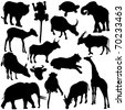 Silhouettes Vector of Wildlife, mammal and Zoo Animal. A set of cute icon collection isolated on white background - stock vector