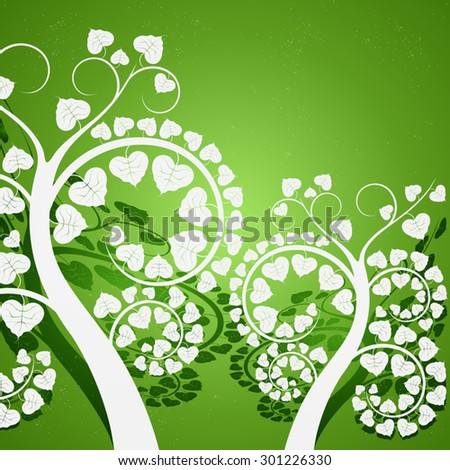 Silver leaf,Buddhist tree on a green background