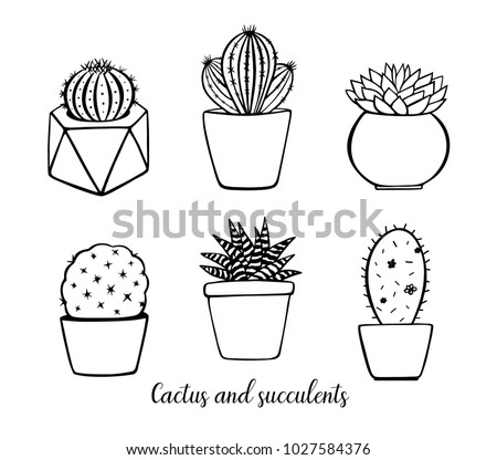 Rose thorn clipart together with Single Roses Drawing Set 228119035 furthermore Printable Cute Pre School Coloring Pages further What are daylilies additionally Coloring For Adults Anti Stress Coloring For Adults Art Therapy Coloring Adults Pdf. on flower garden