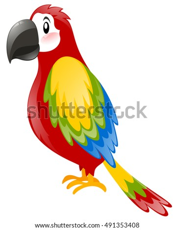 Simple macaw parrot on white