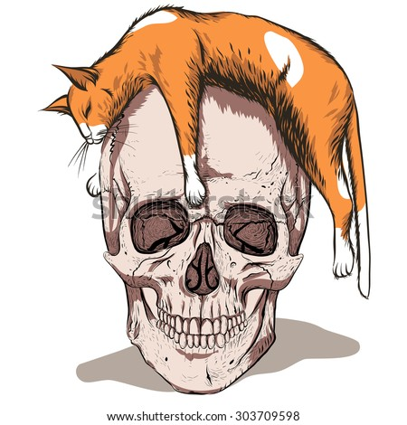 Simple skull with orange cat.White background. - stock vector