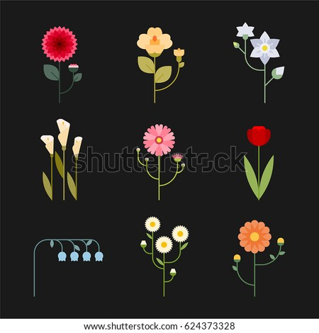 simple various kind flower vector illustration flat design