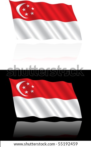 Singapore Flag Flowing - stock vector