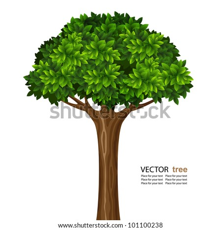 Single brightly green tree isolated on white background - stock vector