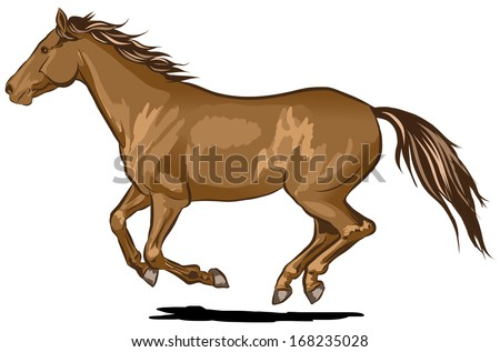 Single brown vector horse galloping at full speed - stock vector