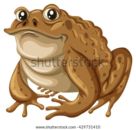 Single frog with brown skin illustration - stock vector