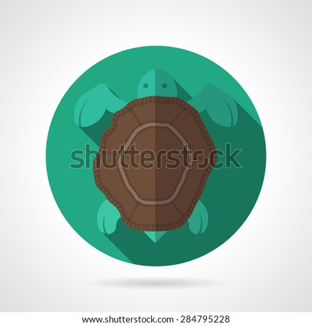 Turtle Shell Vector Turtle With Brown Shell on