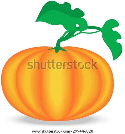 Single Ripe Pumpkin Fruit with Foliage, Isolated - stock vector