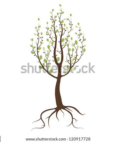 Single tree on white background - stock vector