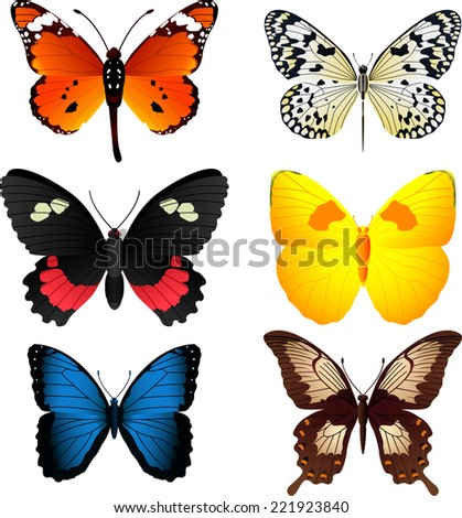 Six beautiful colorful butterflies collection, with orange and black butterfly, black and white butterfly, butterfly vector illustration.  - stock vector