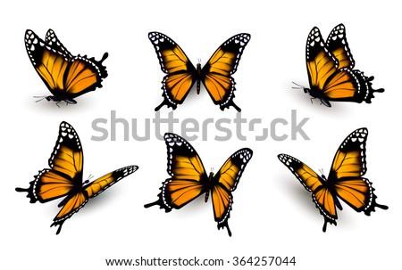 Six butterflies set. Vector. - stock vector