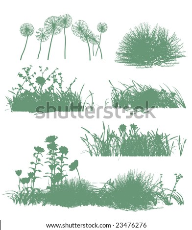 six grass silhouettes - stock vector