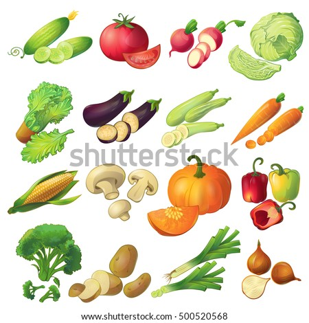 Sixteen isolated realistic cartoon ripe vegetable icons set colorful with slices on blank background flat vector illustration
